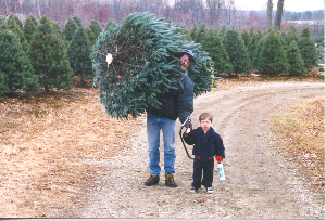 Christmas Tree Farms in RI, Christmas Tree Farms in MA